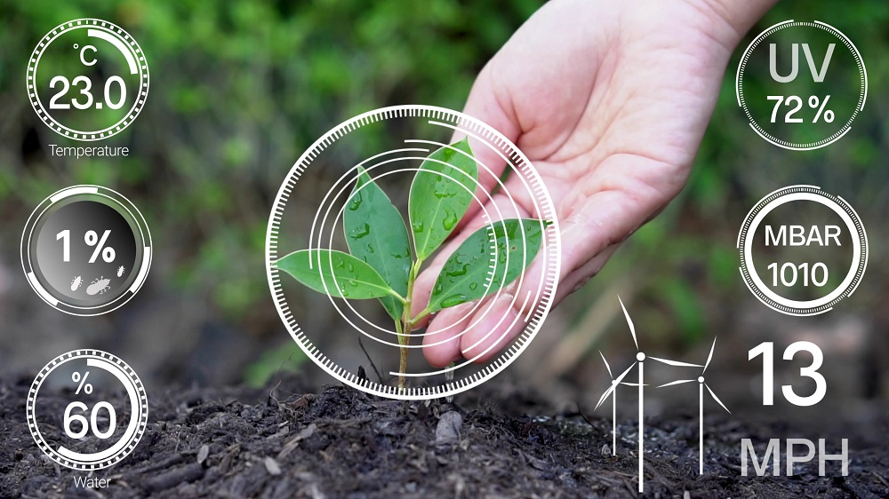 AI in the agriculture industry | SG Analytics